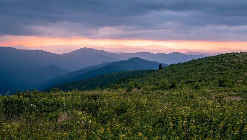 Black Balsam Knob on the Art Loeb Trail in Pisgah National Forest near Blue Ridge Parkway at sunset