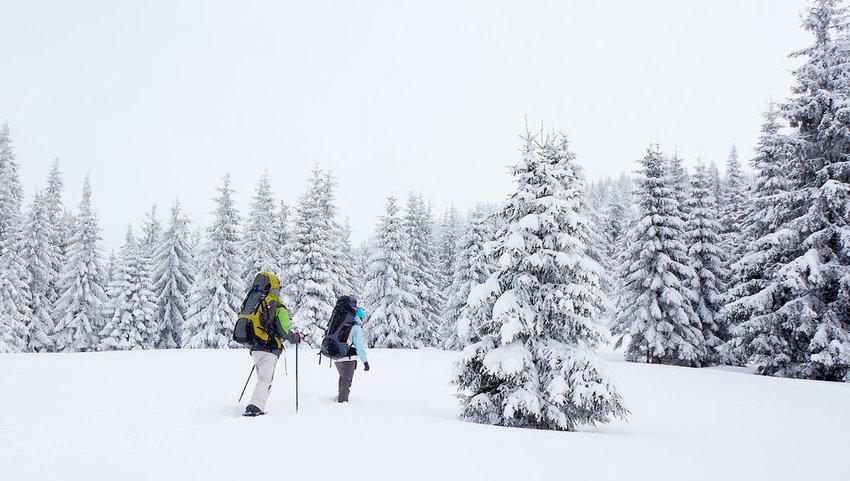 Two people snowshoeing in the snow with backpacks on