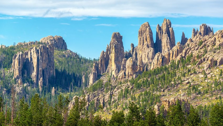 View of Cathedral Spires rock formation in Custer State Park with trees all around
