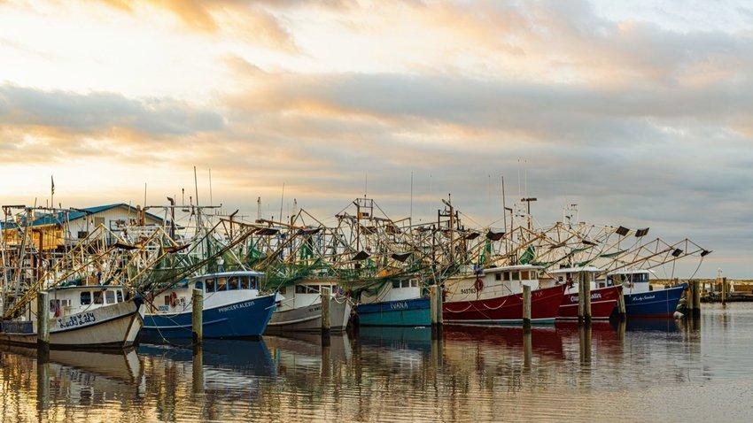 Shrimp boats in Biloxi, Mississippi