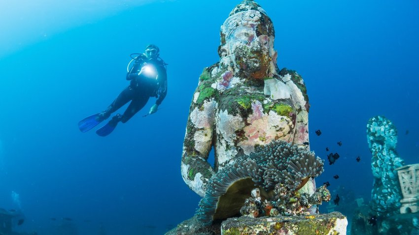 Why Now Is a Great Time To Start Getting Scuba Certified