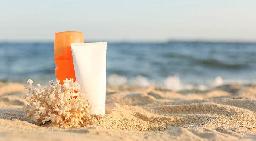 6 Reef-Safe Sunscreens to Try at the Beach